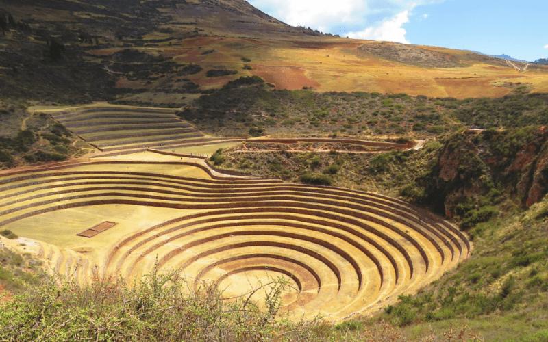 agricultura inca