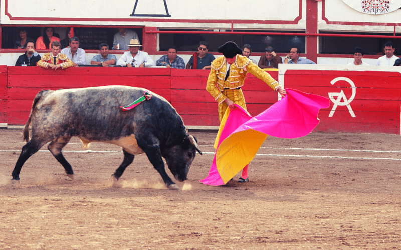 toreros famosos mundo